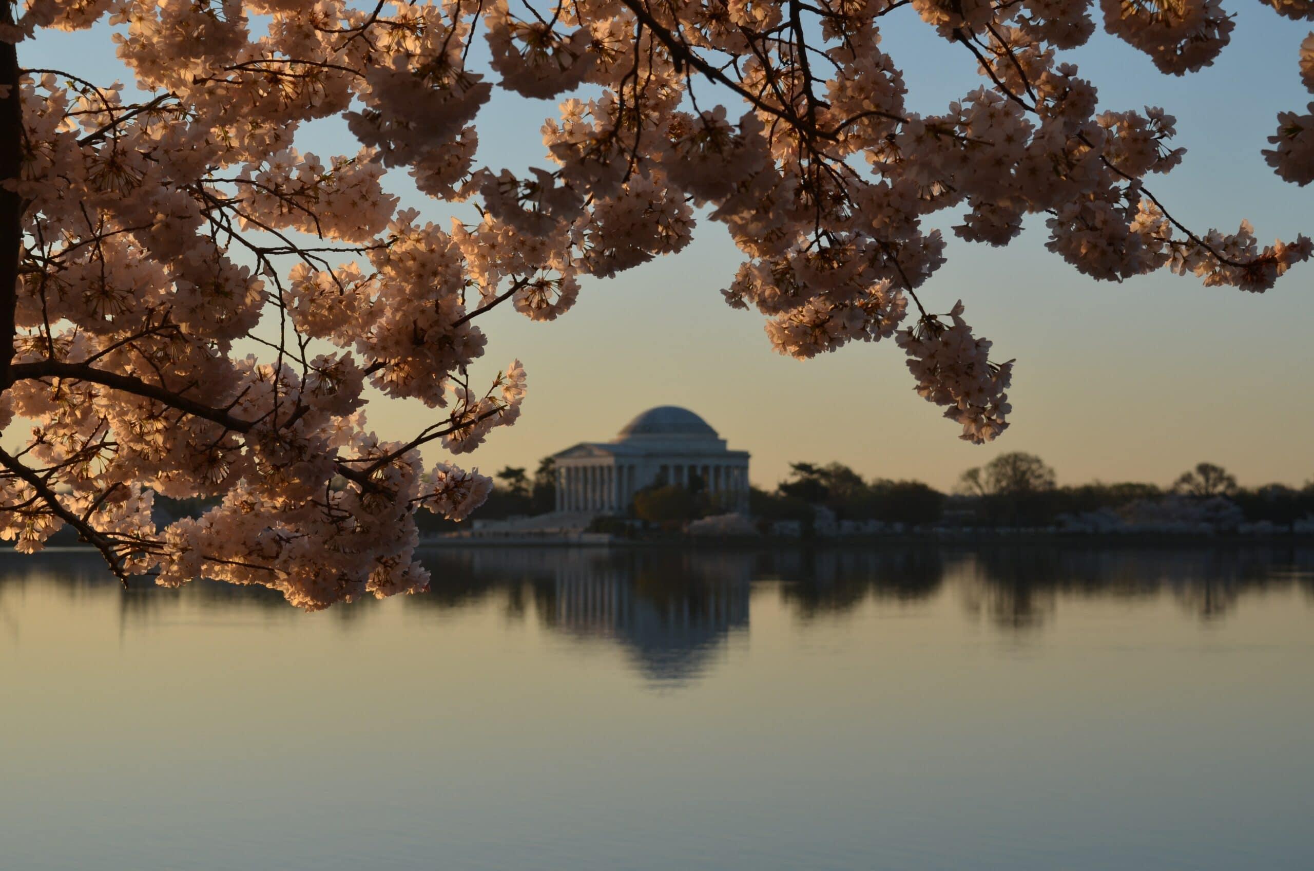 GIC 2011 – Washington, D.C. Program